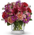 Enchanted Garden - Tauranga flower delivery - Take a wondrous walk through this enchanted garden of peach roses, pink lilies and purple daisies.