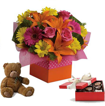 Code: A47CT. Name: Starburst Splash with a box of chocolates and a Teddy Bear. Price: NZD $135.89