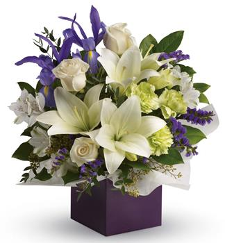 Code: A63. Name: Graceful Beauty. Description: Gorgeous white lilies and delicate blue iris dance gracefully with roses and alstroemeria in this luxurious arrangement. Price: NZD $82.90
