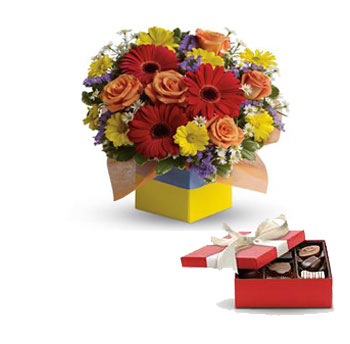 Code: C23. Name: Garden Spectacle. Description: You will want to put this colourful arrangement on your hit parade of gifts to send. Bold primary colours and a perfect mix of flowers make it great for everyone. Price: NZD $117.90