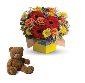 Code: C23. Name: Garden Spectacle. Description: You will want to put this colourful arrangement on your hit parade of gifts to send. Bold primary colours and a perfect mix of flowers make it great for everyone. Price: NZD $107.90