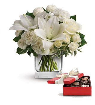 Code: C53. Name: Starlit Kisses. Description: Wish upon a star, but seal the deal with the pure white perfection of this luxurious cube arrangement. These fresh and fragrant flowers will make you the star of her heart! Price: NZD $109.90
