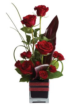 Code: R30. Name: Rose Romance. Description: Roses, the traditional flower of love, receive a modern twist in this imaginative arrangement, stylishly presented in a contemporary glass cube. Price: NZD $94.90