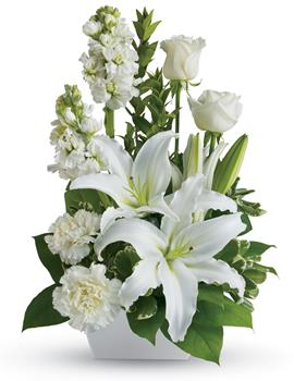Code: S23. Name: White Simplicity. Description: If you want to send your warmest thoughts to show how much you care, this lovely arrangement with white carnations and lilies sends your thoughts compassionately. Price: NZD $72.90