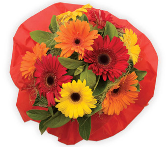 Category: Bouquets. Description: Send flowers to North Shore from the Floral Bouquets and Boxed Bouquets range. Price: NZD From $59.95