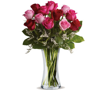 This range come presented in a vase or a box ready for Christchurch delivery